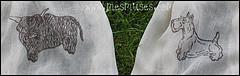 Vasalható strassz minták